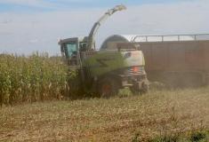 Harvesters-Claas850-1265