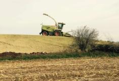 Harvesters-Claas850-1778