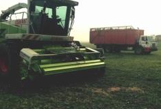 Hay-TwoClaasPU380_1695