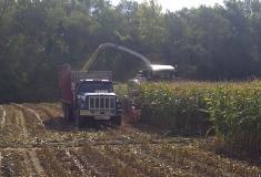 forage-harvester_0182