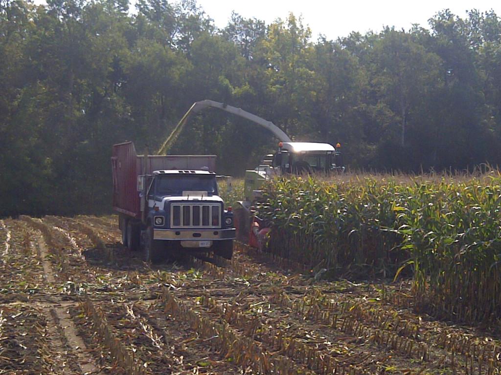 Forage Corn Harvester